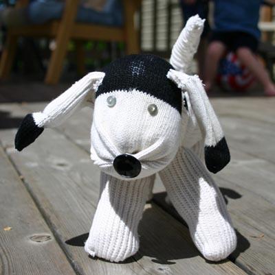 Sarahs_puppy